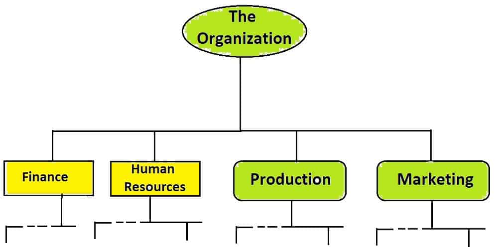 What are the Organization Processes?